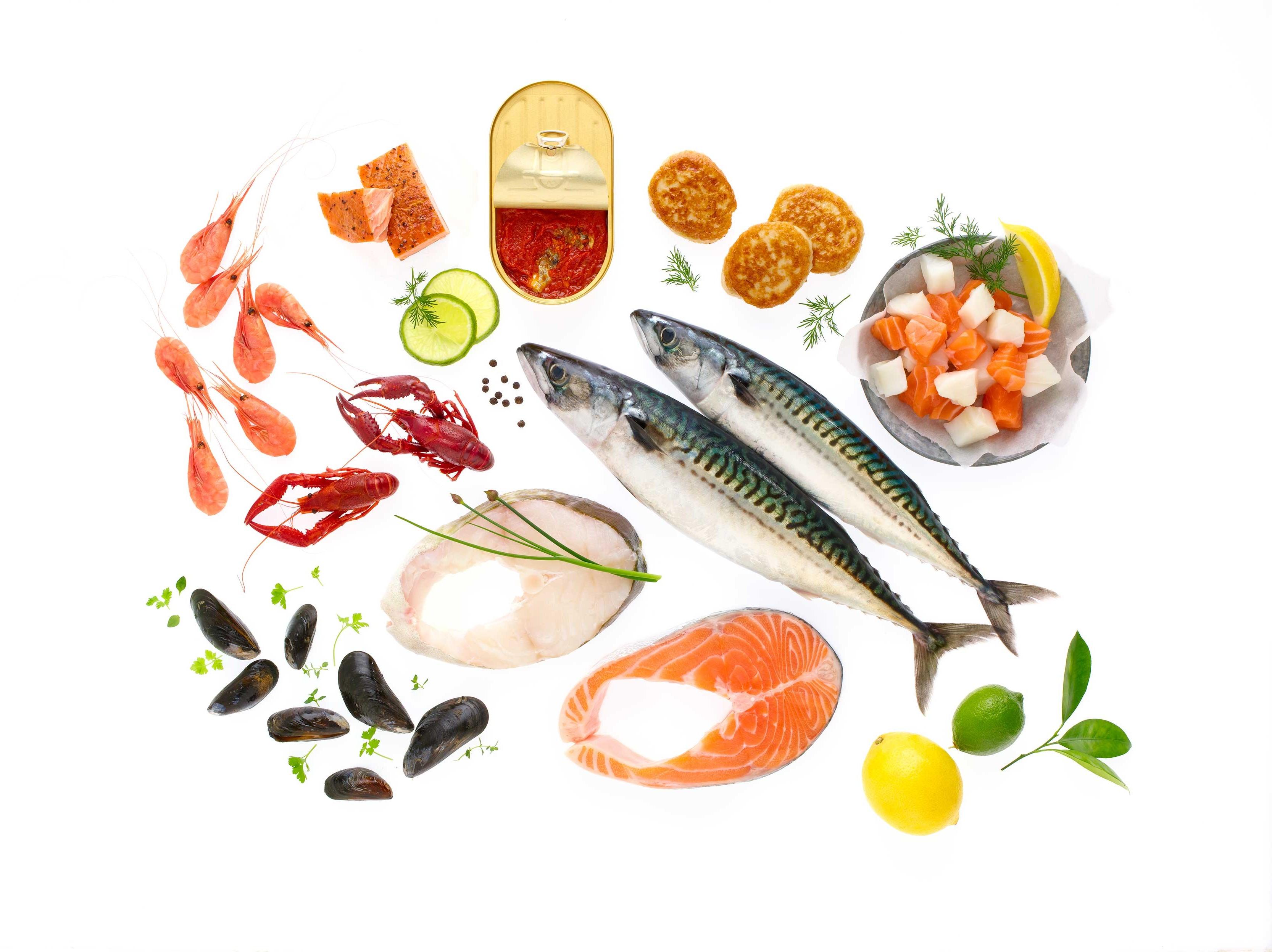 Forskjellige typer fisk og fiskeprodukter
