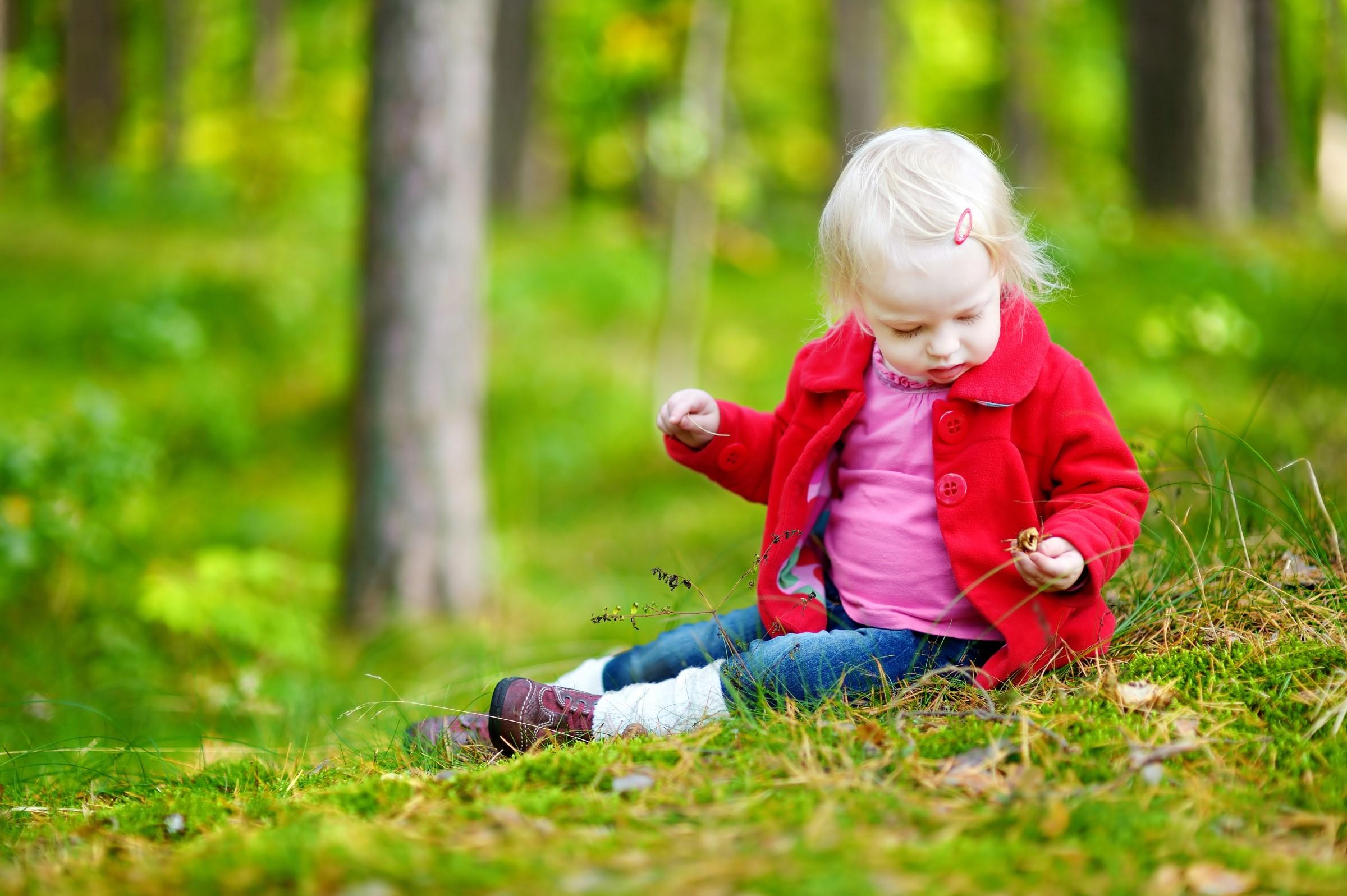 Barn som plukker sopp i skogen