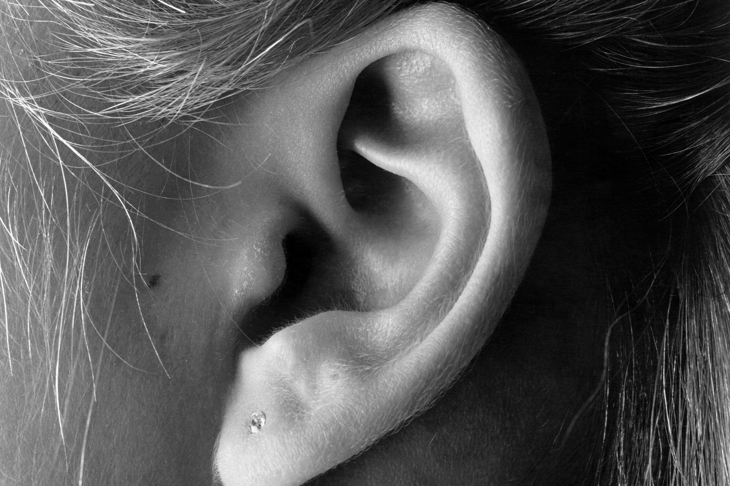 Bilde av øre