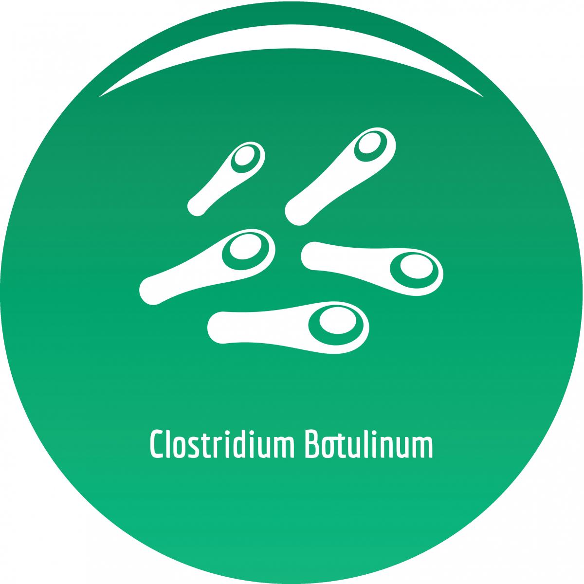 Tegnet bilde av clostridium botulinum. Bakterier inne i en grønn sirkel